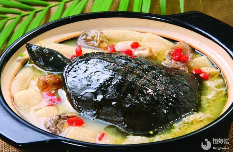东海神龟可以吃?错了,那是鳖,试管妈妈可不能吃哦!