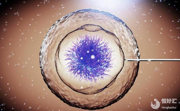 试管婴儿冷冻胚胎成功率高不高?首先要看这几点