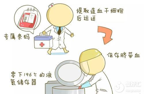 脐带血有必要保存吗?这3点常识很多人不知