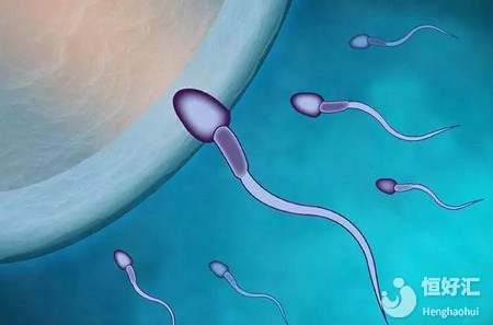 备孕避开这4大不利点,助你怀健康宝宝!