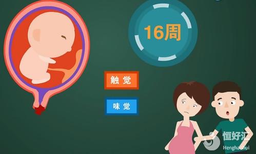 揭秘胎教的常见方式,你需要注意的是这几点!
