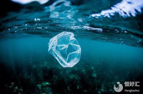 塑料品很可能是男性生育力的杀手!看完不要惊讶
