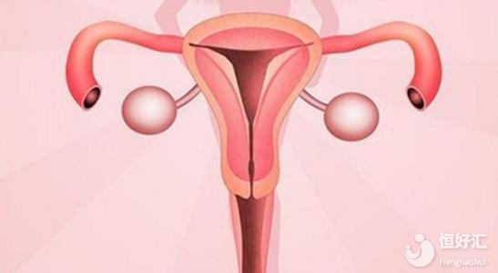 试管助孕碰上子宫肌瘤是治疗还是优先孕育?