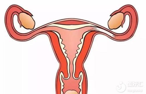 卵巢功能低下如何备孕?能做试管婴儿吗?